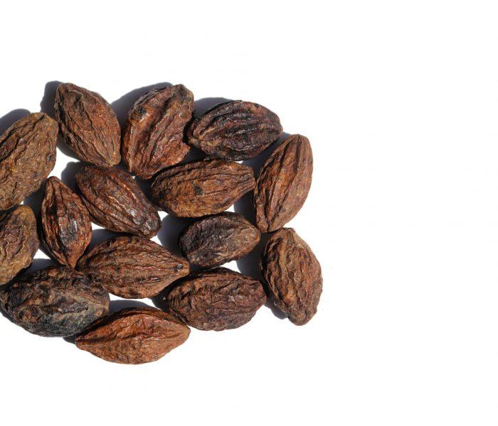 Terminalia,Chebula,Or,Haritaki,Fruit,Isolated,On,White,Background,With